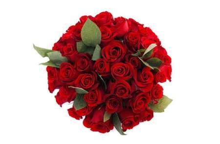 J'ai quoi pour 100 Roses ???